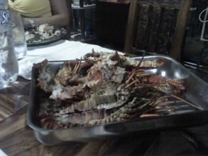 Some Lobster in the Namib